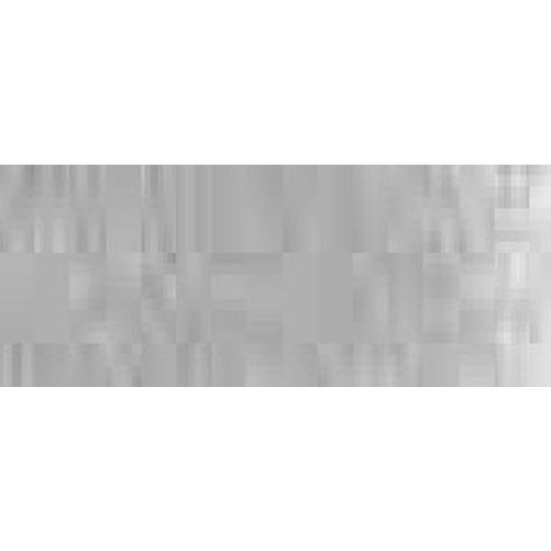 Silber - Hansa pro-color Body Edition 30ml 68001