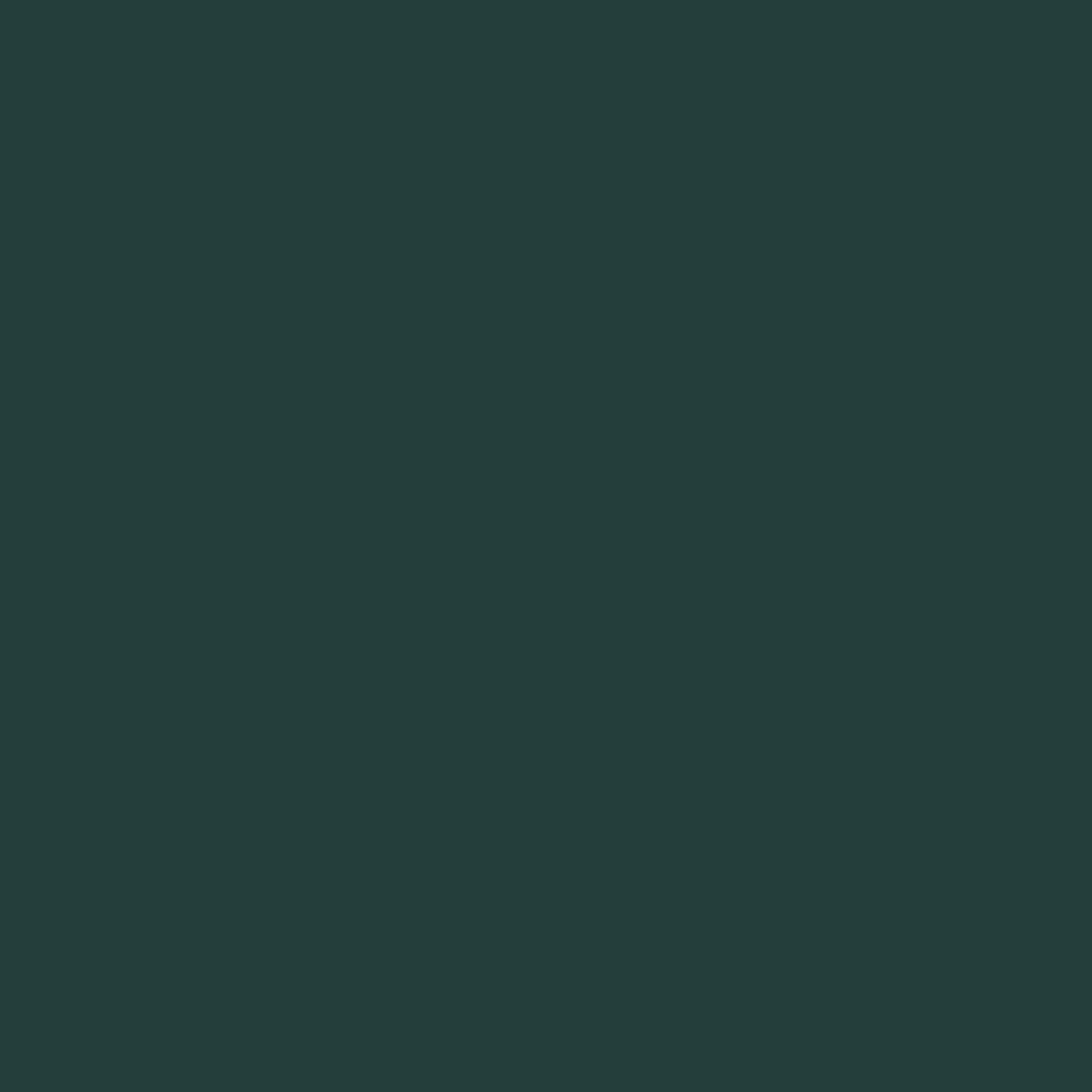 Italeri IT Acrylfarbe 4795 Pz.Schwarzgr.RA 20 ml Airbrush Farbe